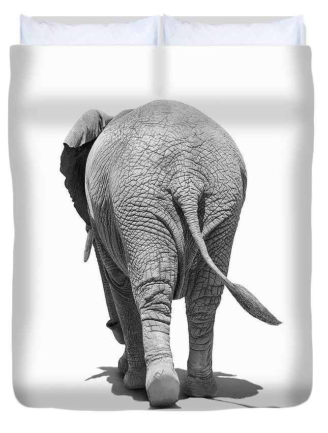 Shadow Duvet Cover featuring the photograph Elephants Behind by Burazin