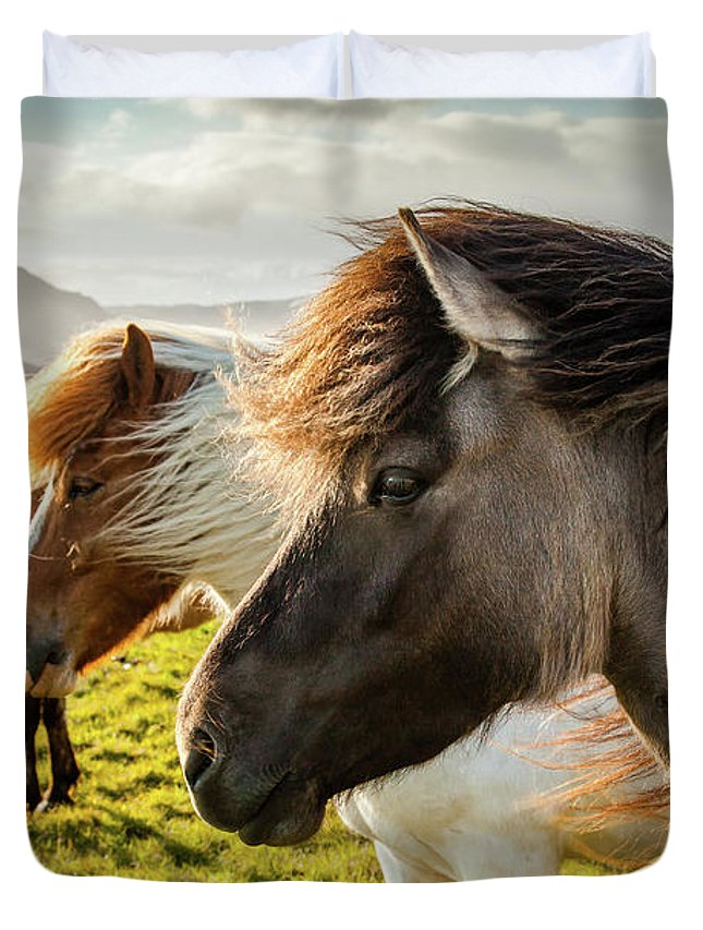 Iceland Duvet Cover featuring the photograph Icelandic Horses by Peter OReilly