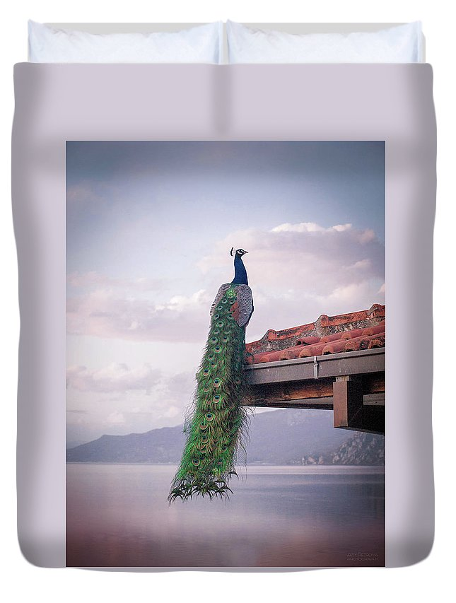 Animal Themes Duvet Cover featuring the photograph Ochrid Lake by Photograpy Is A Play With Light