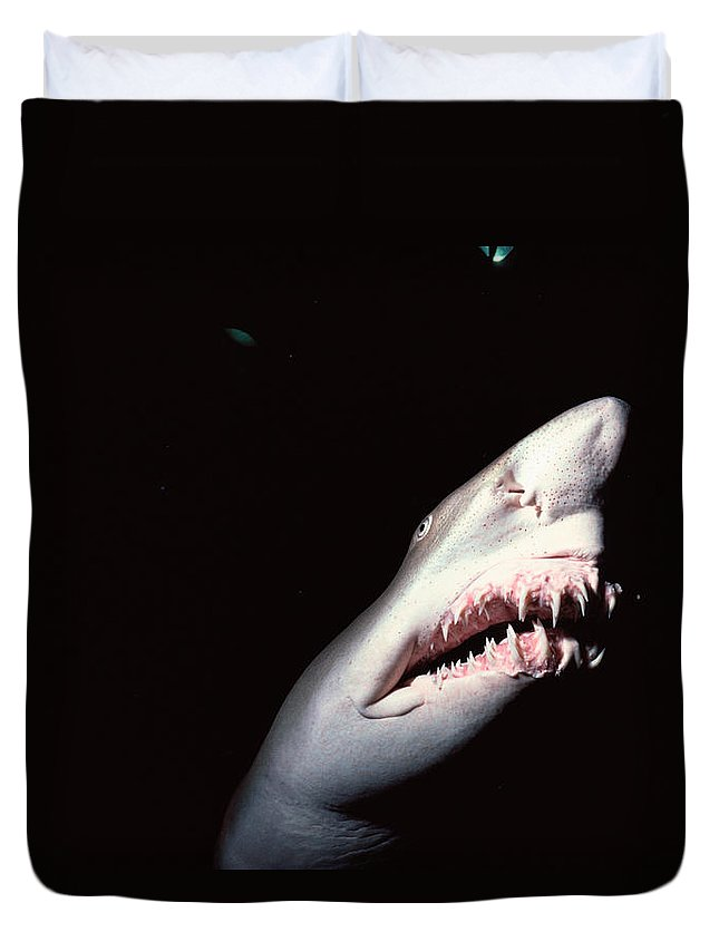 Underwater Duvet Cover featuring the photograph Sand Tiger Shark by Jeff Rotman