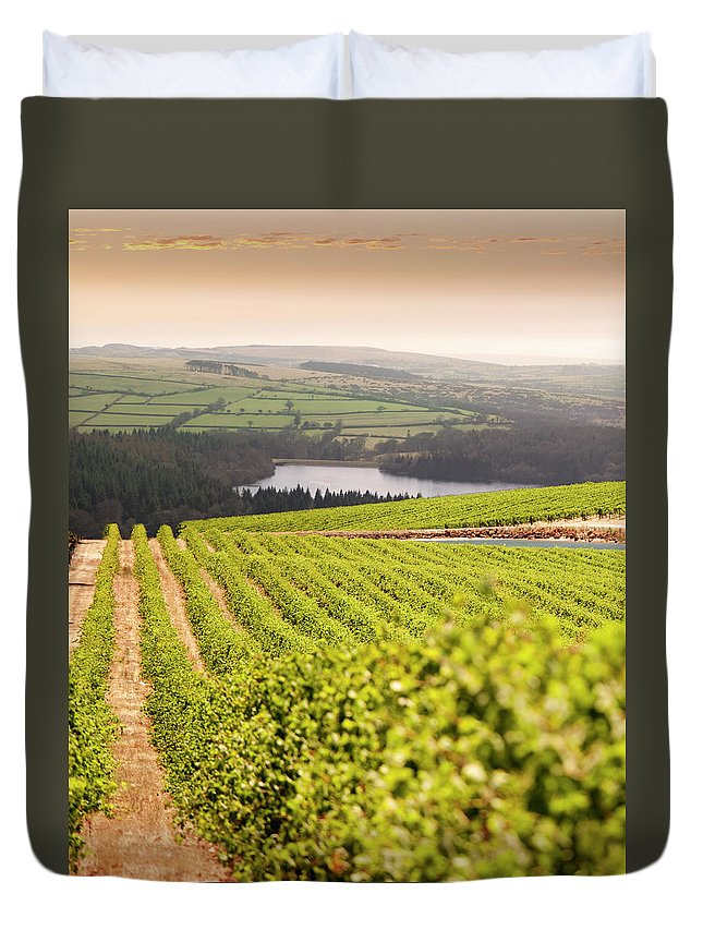 Scenics Duvet Cover featuring the photograph Vineyard At Sunset by Lockiecurrie