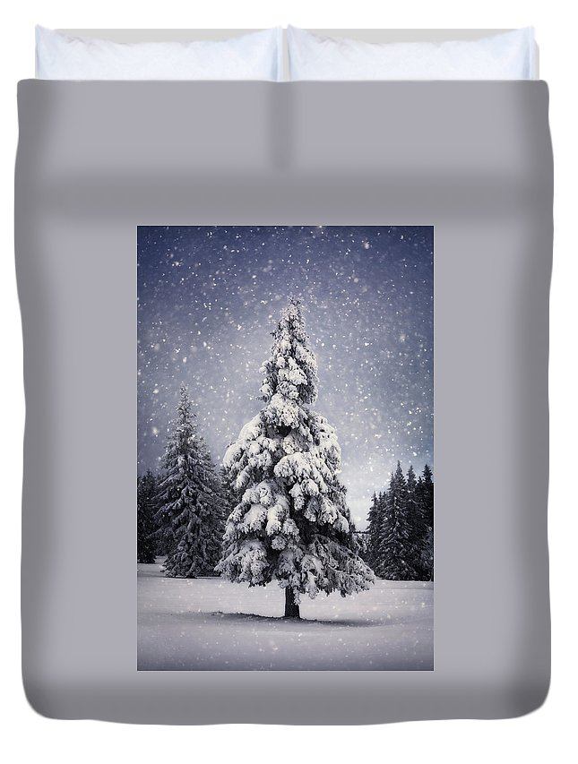 Scenics Duvet Cover featuring the photograph Winter Tree by Borchee