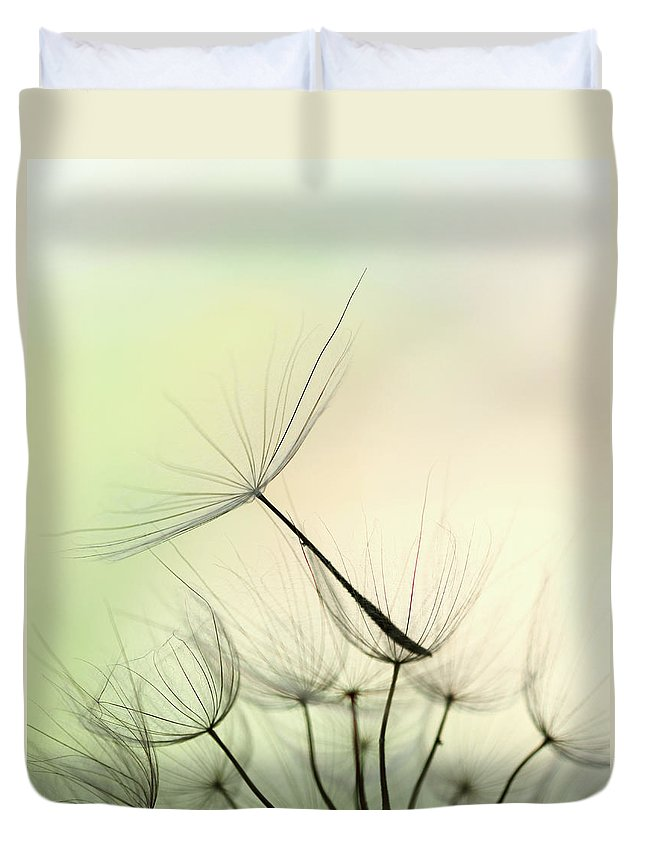 Single Flower Duvet Cover featuring the photograph Dandelion Seed by Jasmina007