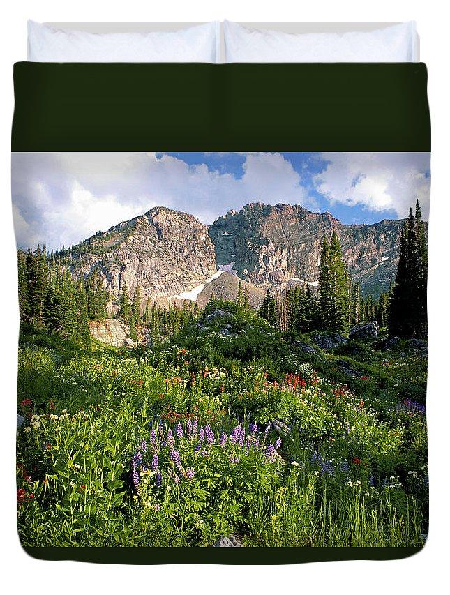 Scenics Duvet Cover featuring the photograph Landscape Of Little Cottonwood Canyon by Mint Images - David Schultz