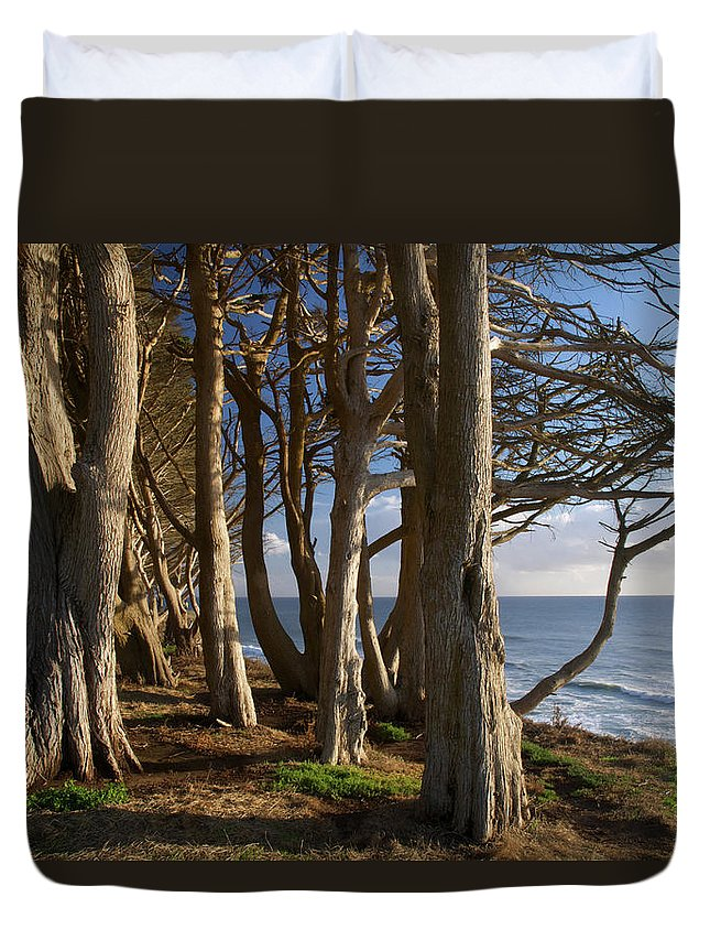 Tranquility Duvet Cover featuring the photograph Rustic Davenport Coast by Mitch Diamond