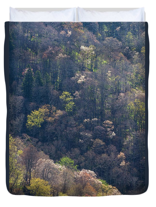 Scenics Duvet Cover featuring the photograph Early Spring, North Carolina by Jerry Whaley