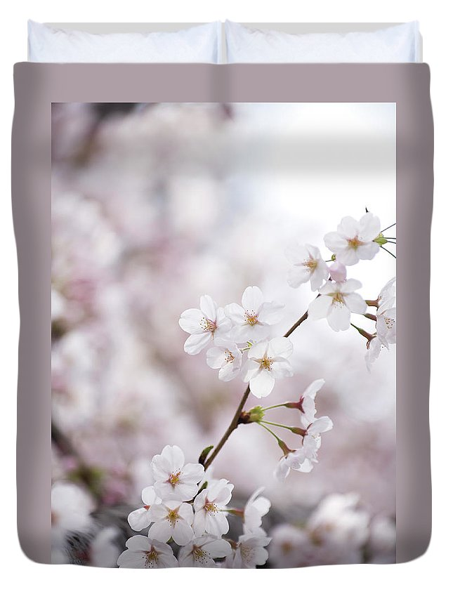 Celebration Duvet Cover featuring the photograph Cherry Blossoms by Ooyoo