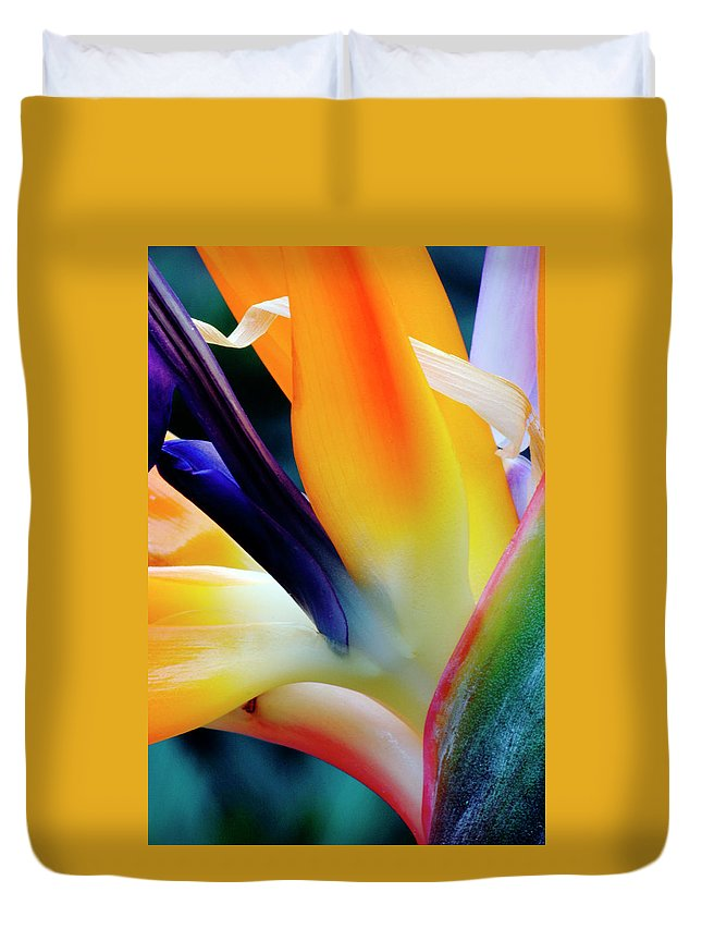 Banana Tree Duvet Cover featuring the photograph A Close-up Of A Flower Of A Bird Of by Eromaze