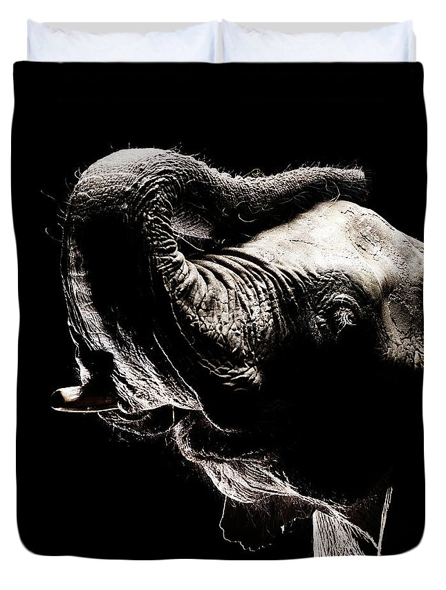 Animal Trunk Duvet Cover featuring the photograph African Elephant With The Trunk Raised by Henrik Sorensen