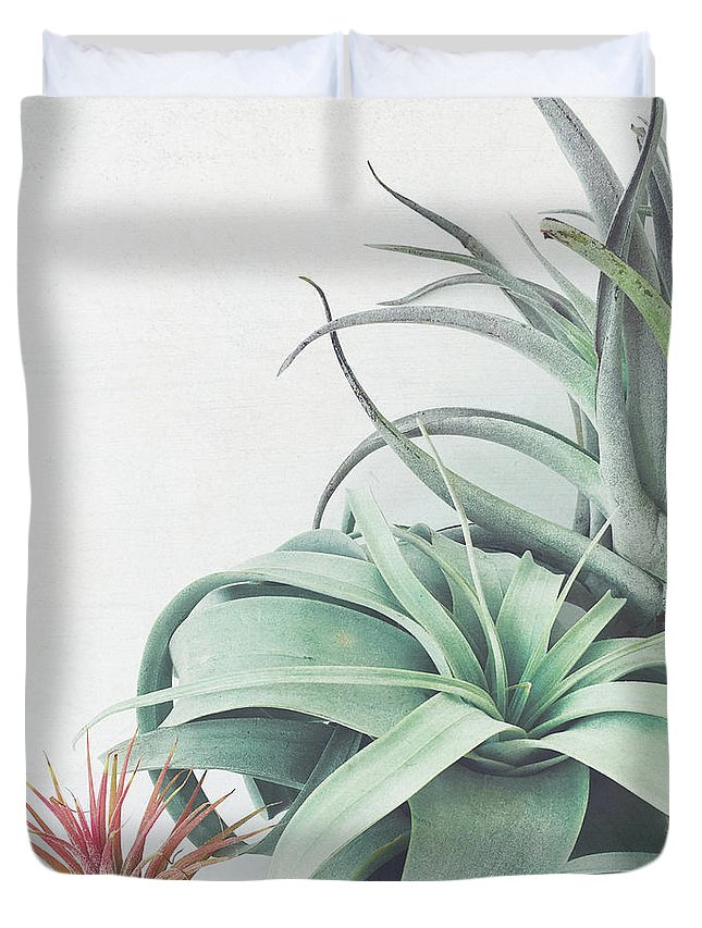 Plants Duvet Cover featuring the photograph Air Plant Collection by Cassia Beck