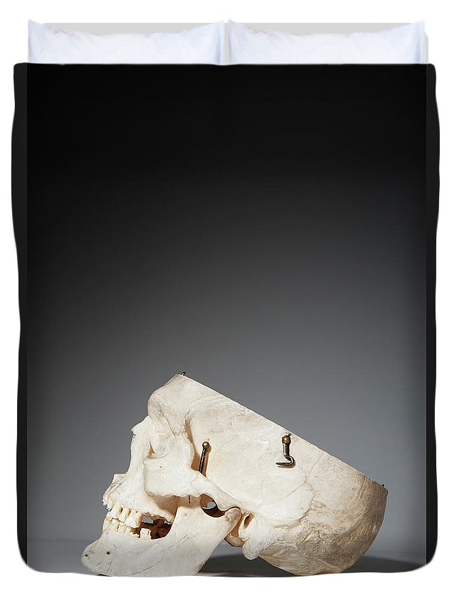 Sweden Duvet Cover featuring the photograph Anatomical Model Of Human Skull by Johner Images