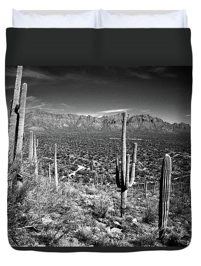 Saguaro Cactus Duvet Cover featuring the photograph Arizona, Tucson, Saguaro Np, Brown by James Denk