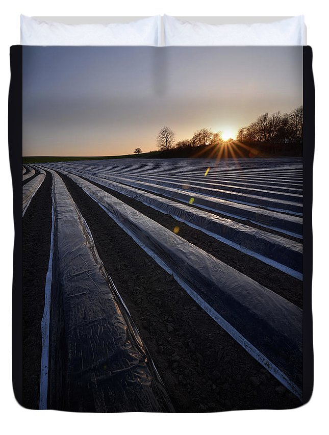 Tranquility Duvet Cover featuring the photograph Asparagus Field by Andy Brandl