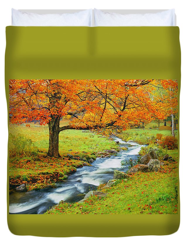 Scenics Duvet Cover featuring the photograph Autumn In Vermont G by Ron thomas