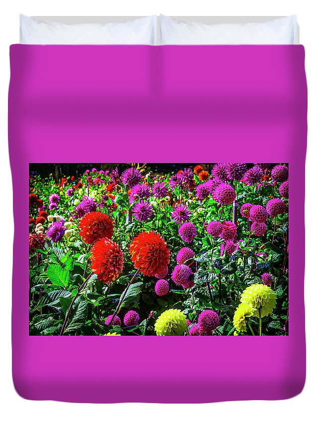 Mood Duvet Cover featuring the photograph Beautiful Dahlia Garden by Garry Gay