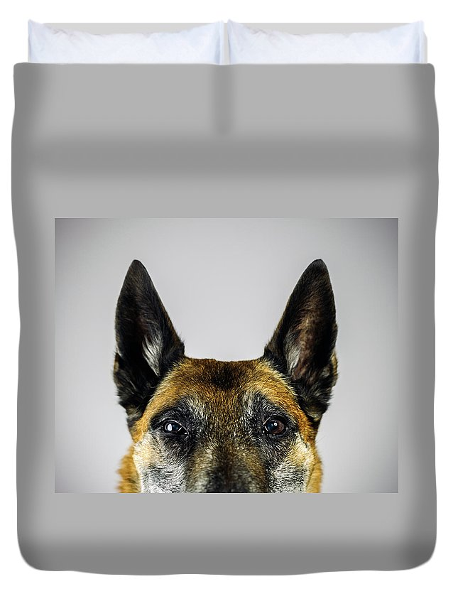 Pets Duvet Cover featuring the photograph Belgian Sheperd Malinois Dog Looking At by Joan Vicent Cantó Roig