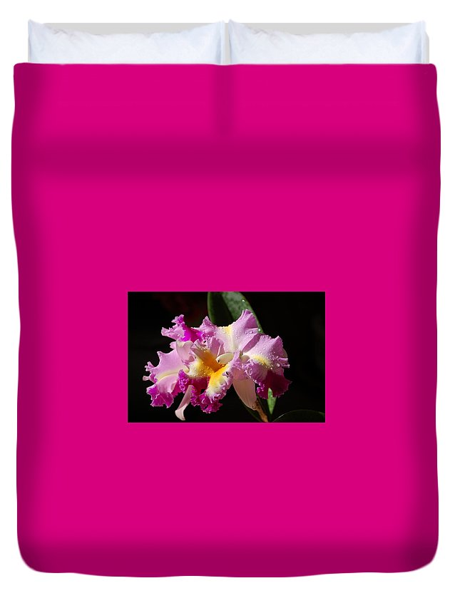 Orchid Duvet Cover featuring the photograph Best Cattleya by Nancy Ayanna Wyatt