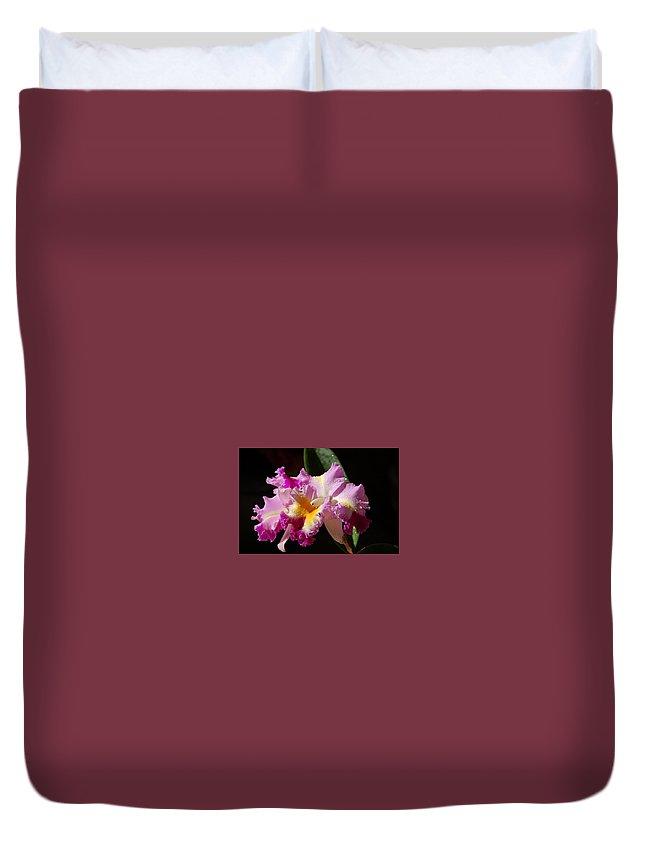 Orchid Duvet Cover featuring the photograph Best Cattleya by Nancy Ayanna Wyatt