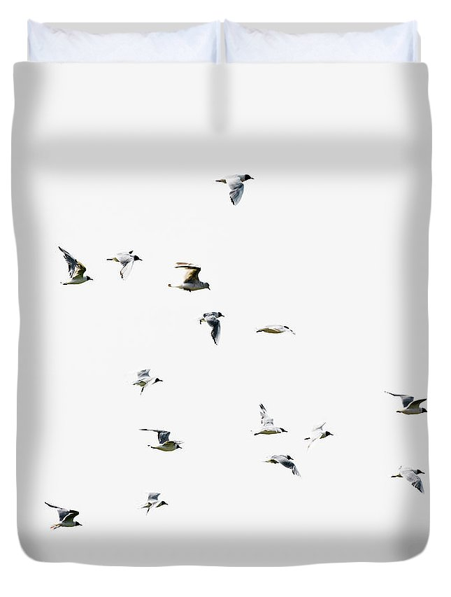 England Duvet Cover featuring the photograph Birds In Flight by Magnusson, Roine