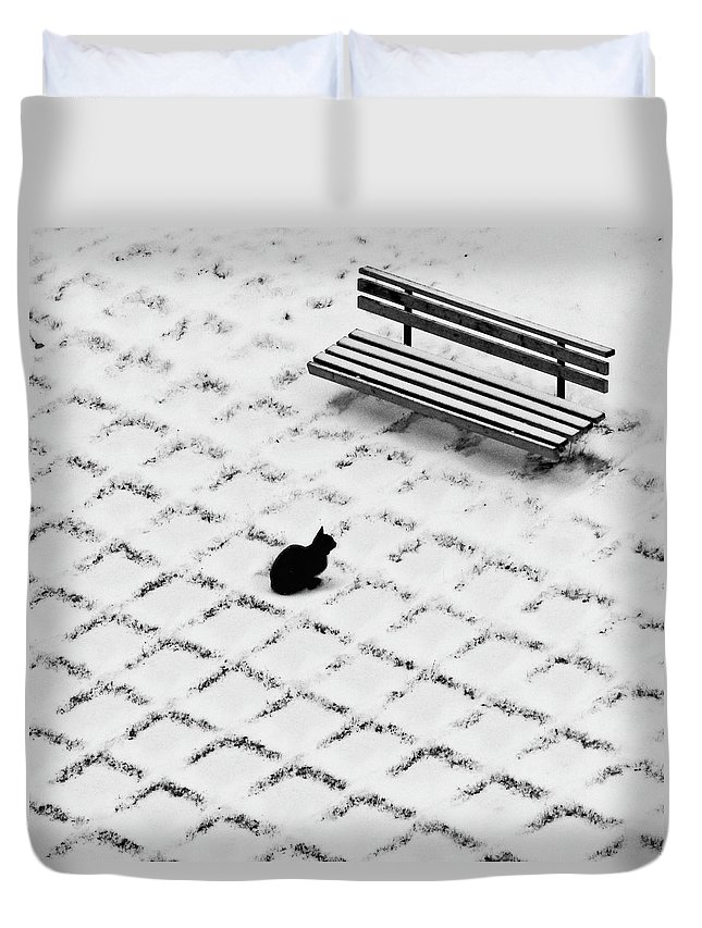 Pets Duvet Cover featuring the photograph Black Cat Contemplating Bench by Photo By Marianna Armata