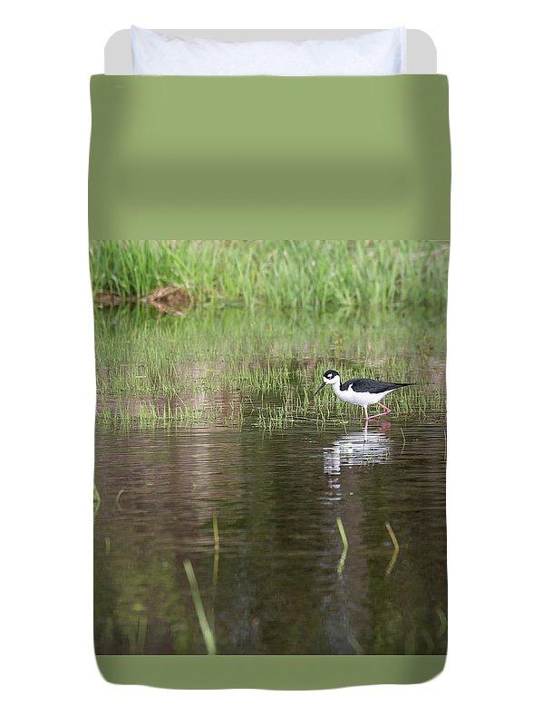 Black-necked Stilt (himantopus Mexicanus) Duvet Cover featuring the photograph Black-necked Stilt 2018-1 by Thomas Young