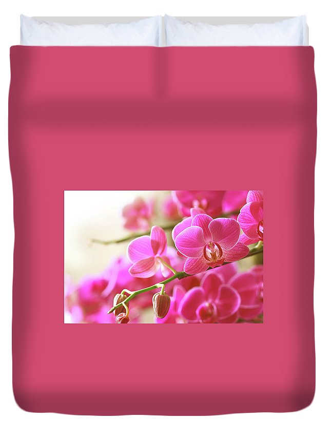 Environmental Conservation Duvet Cover featuring the photograph Blooming Pink Orchid On A Green Branch by Dreaming2004