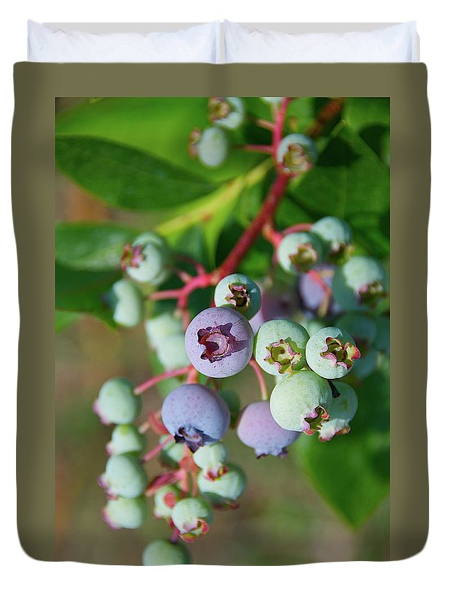 Large Group Of Objects Duvet Cover featuring the photograph Blueberries by ©howd, Howard Lau