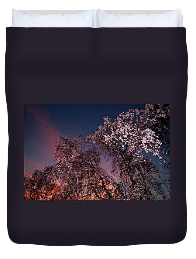 Outdoors Duvet Cover featuring the photograph Branch Brook Park, Newark, Nj by Zilberman-sands