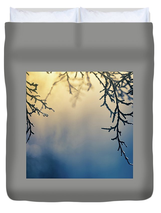 Saturated Color Duvet Cover featuring the photograph Branch Of Pine Tree by Jeja
