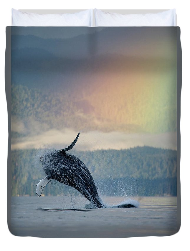 Animal Themes Duvet Cover featuring the photograph Breaching Humpback Whale And Rainbow by Paul Souders