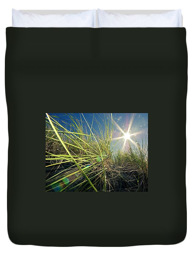 Tranquility Duvet Cover featuring the photograph Bugs Eye View Through Tall Grasses by By Meredith Farmer