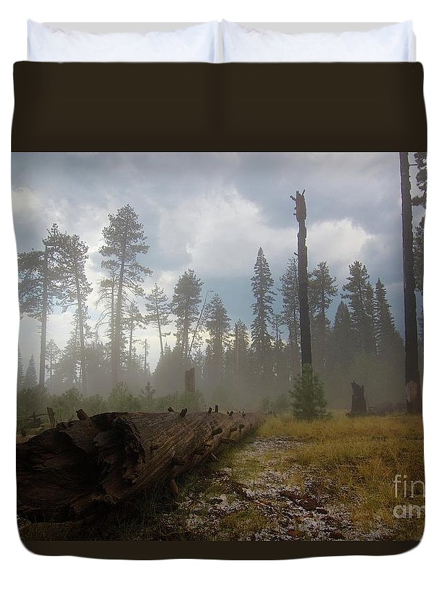 Burnt Duvet Cover featuring the photograph Burned Trees At Lassen Volcanic by Victor De Souza