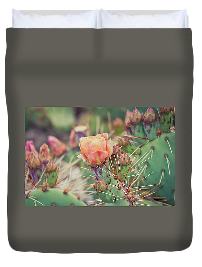 Orange Color Duvet Cover featuring the photograph Cactus Blossom by Harpazo hope
