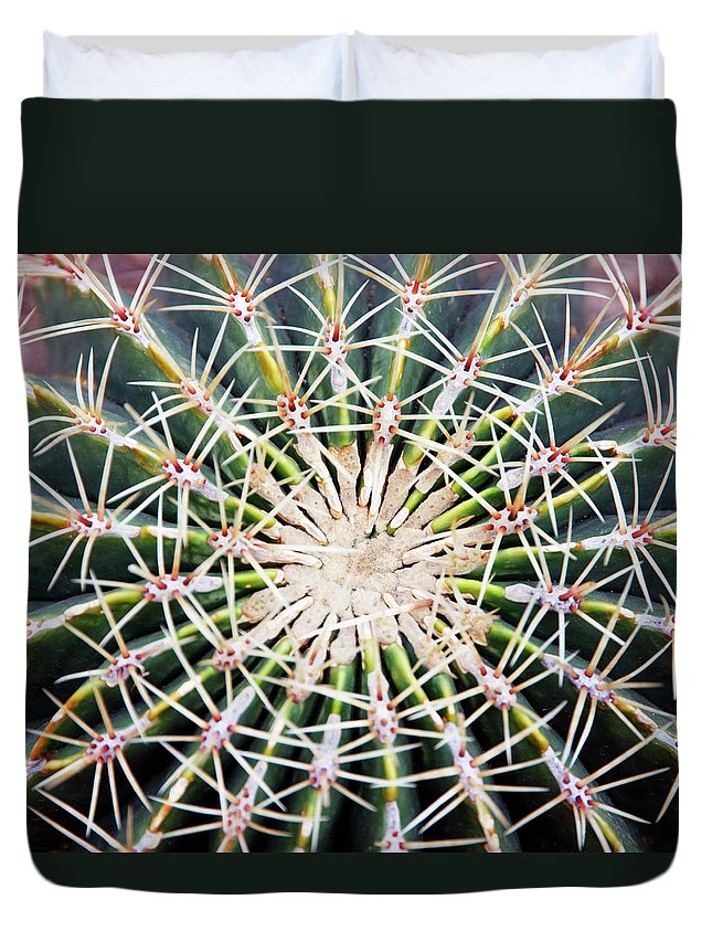 Sharp Duvet Cover featuring the photograph Cactus Ferocactus Histrix, Overhead View by Liz Whitaker