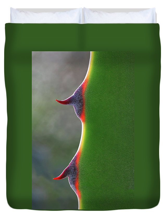 Needle Duvet Cover featuring the photograph Cactus by Patricia Fenn Gallery