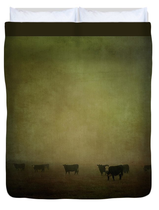 Pets Duvet Cover featuring the photograph Cattle In The Mist by Jill Ferry