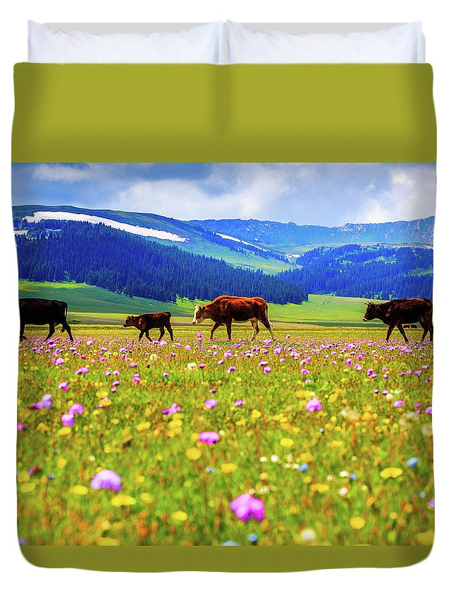 Tranquility Duvet Cover featuring the photograph Cattle Walking In Grassland by Feng Wei Photography