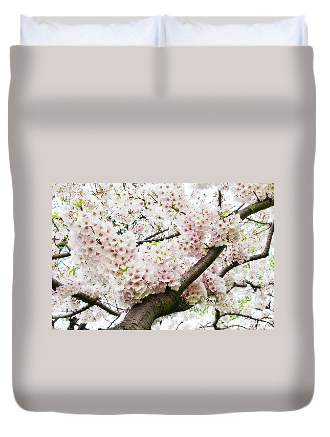 Outdoors Duvet Cover featuring the photograph Cherry Blossom by Sky Noir Photography By Bill Dickinson