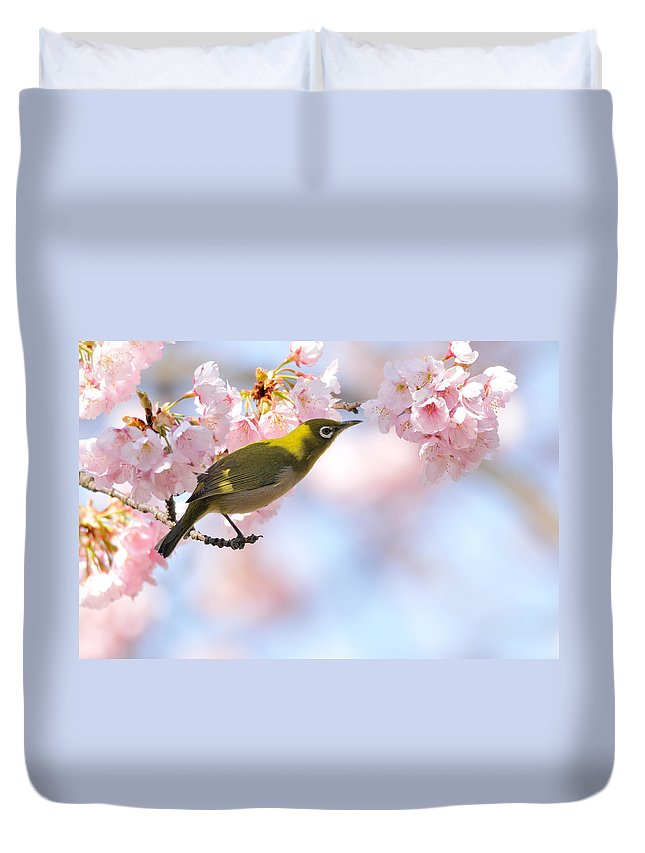 Animal Themes Duvet Cover featuring the photograph Cherry Blossoms by Myu-myu