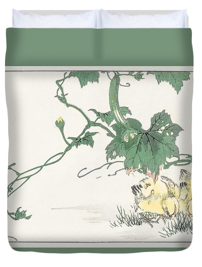 Nature Duvet Cover featuring the painting Chick Illustration From Pictorial Monograph Of Birds 1885 By Numata Kashu 1838-1901 by Numata Kashu