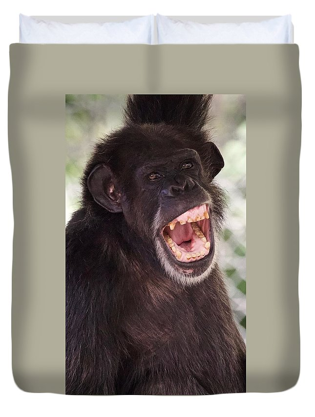 Chimp Duvet Cover featuring the photograph Chimp With Mouth Open by Josh Silver