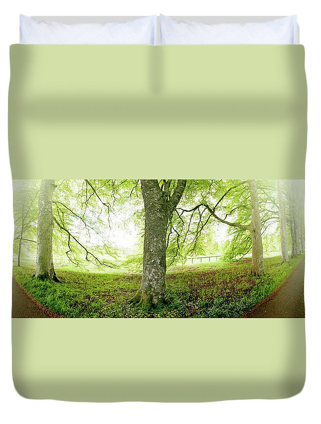 Panoramic Duvet Cover featuring the photograph Choice, Which Path To Take by Kathy Collins