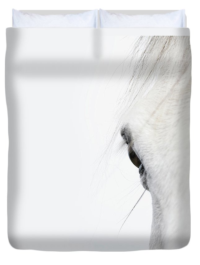 Horse Duvet Cover featuring the photograph Close Up Of A Welsh Mountain Pony by Andrew Bret Wallis