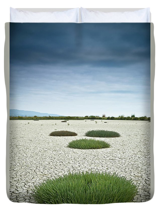 Grass Duvet Cover featuring the photograph Clumps Of Grass Growing Through Cracked by David Duchemin / Design Pics