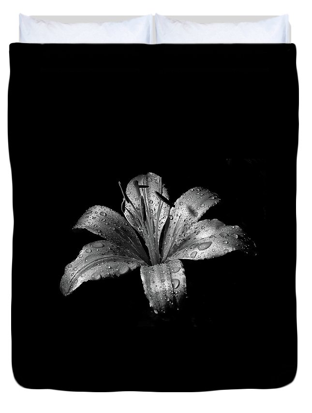 Black Background Duvet Cover featuring the photograph Collection by Photograph By Ryan Brady-toomey
