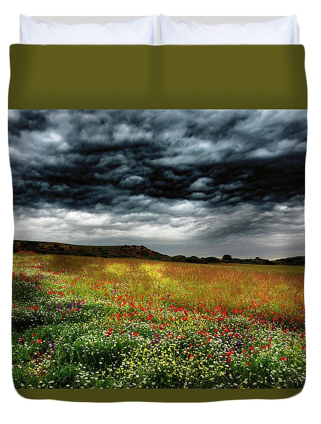 Nature Duvet Cover featuring the photograph Colorful Fields 2 by Vicente Sargues