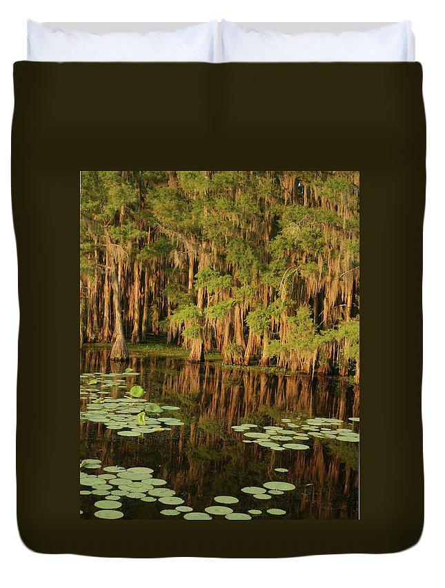 Outdoors Duvet Cover featuring the photograph Cypress In The Lake by Jlfcapture