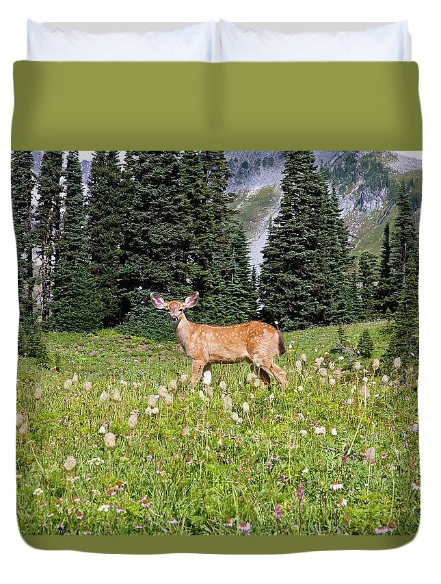 Alertness Duvet Cover featuring the photograph Deer Cervidae In Paradise Park In Mt by Design Pics / Craig Tuttle