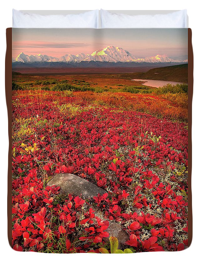 Scenics Duvet Cover featuring the photograph Denali National Park Fall Colors by Kevin Mcneal
