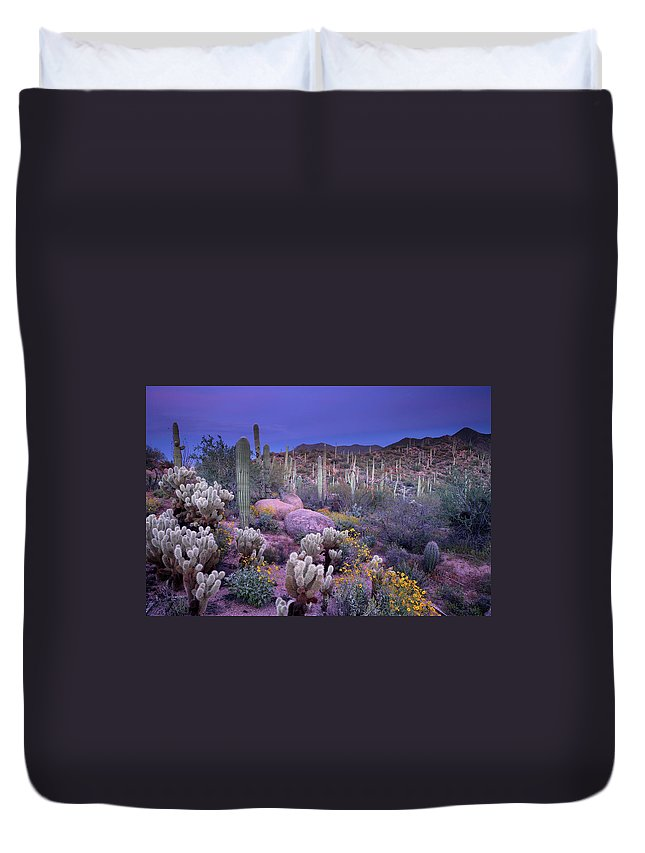 Saguaro Cactus Duvet Cover featuring the photograph Desert Garden by Ericfoltz